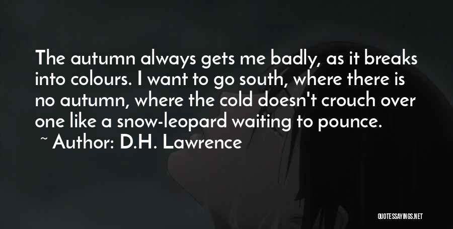 Snow Leopard Quotes By D.H. Lawrence