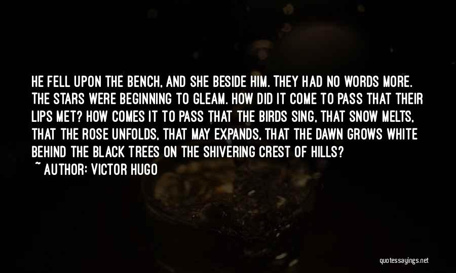 Snow Melts Quotes By Victor Hugo
