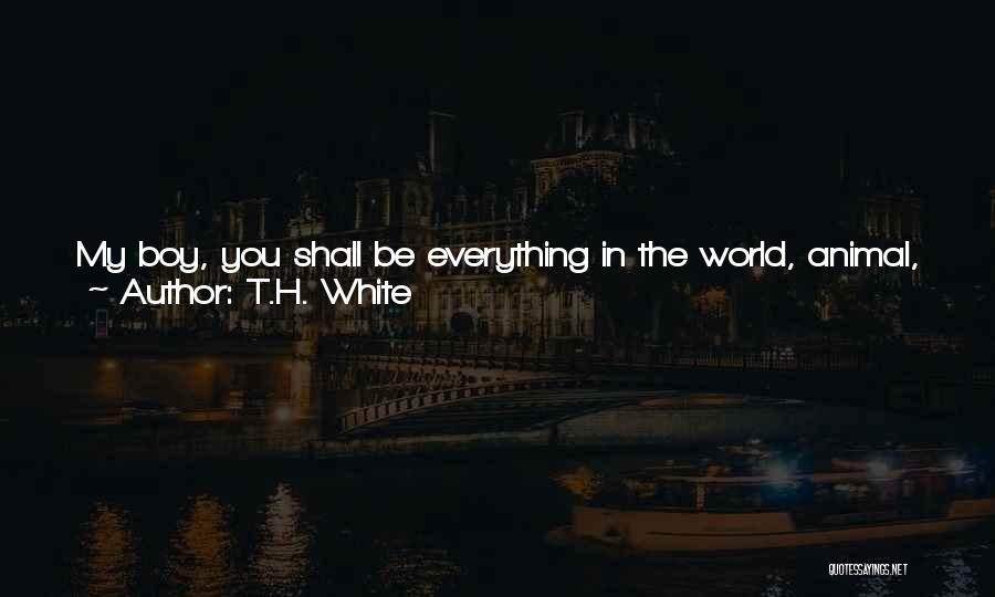 So Done With You Quotes By T.H. White