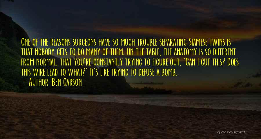 So Many Reasons Quotes By Ben Carson
