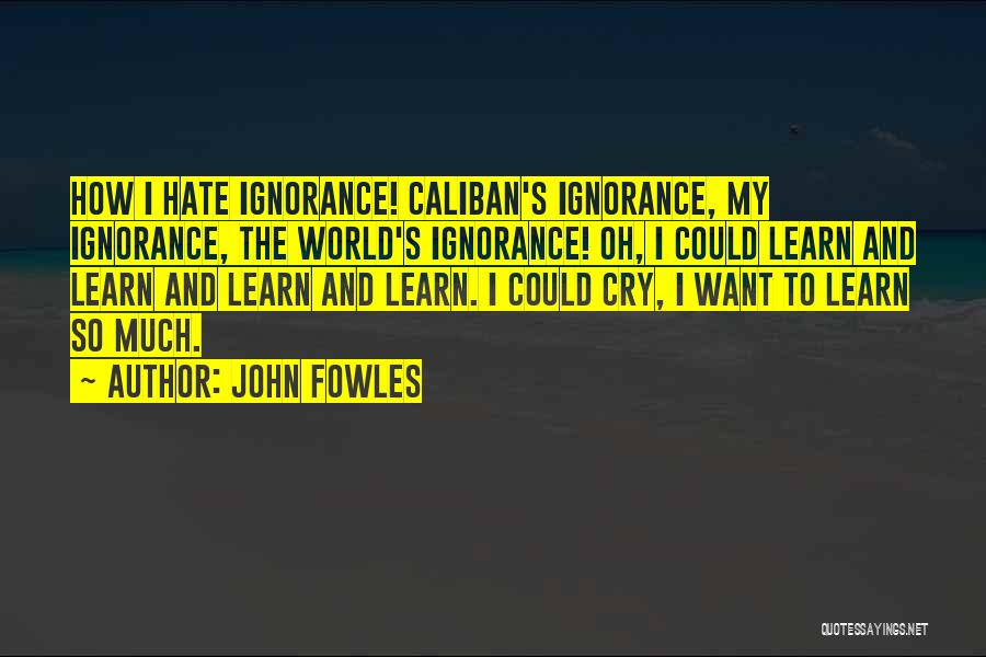 So Much Hate Quotes By John Fowles