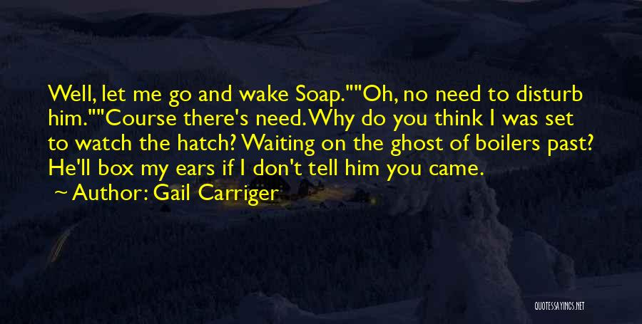 Soap Box Quotes By Gail Carriger
