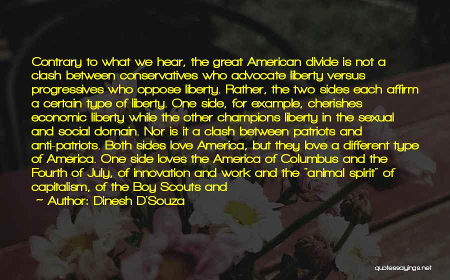 Social Divide Quotes By Dinesh D'Souza