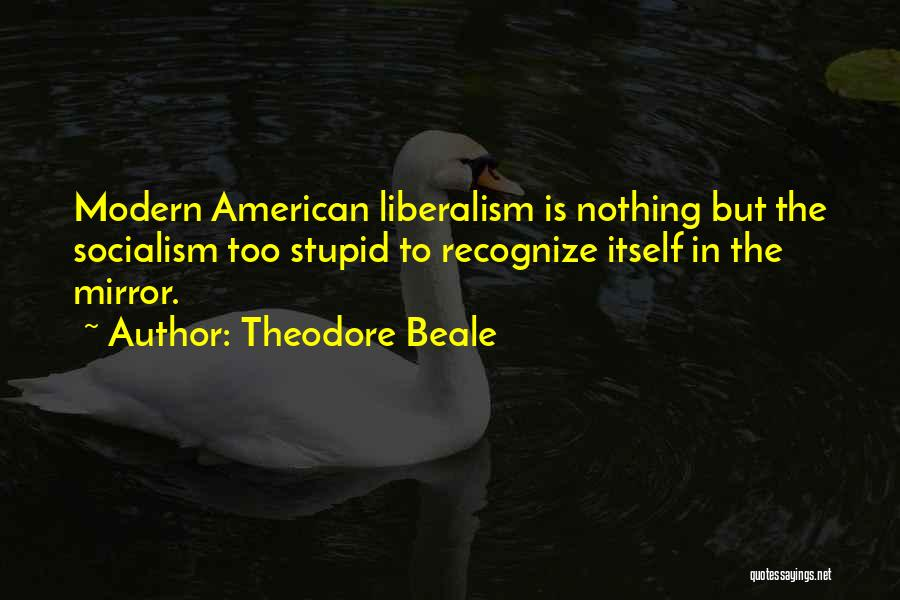 Socialism And Liberalism Quotes By Theodore Beale