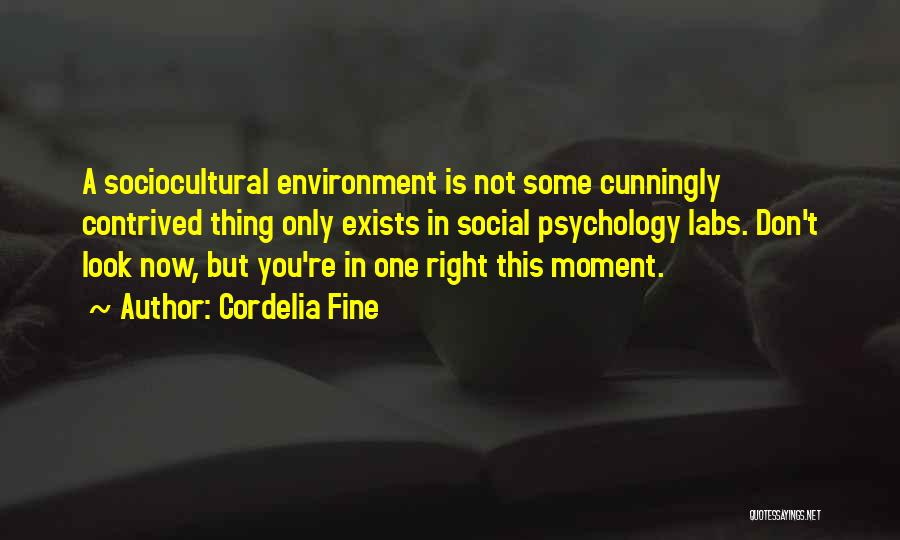 Sociocultural Psychology Quotes By Cordelia Fine