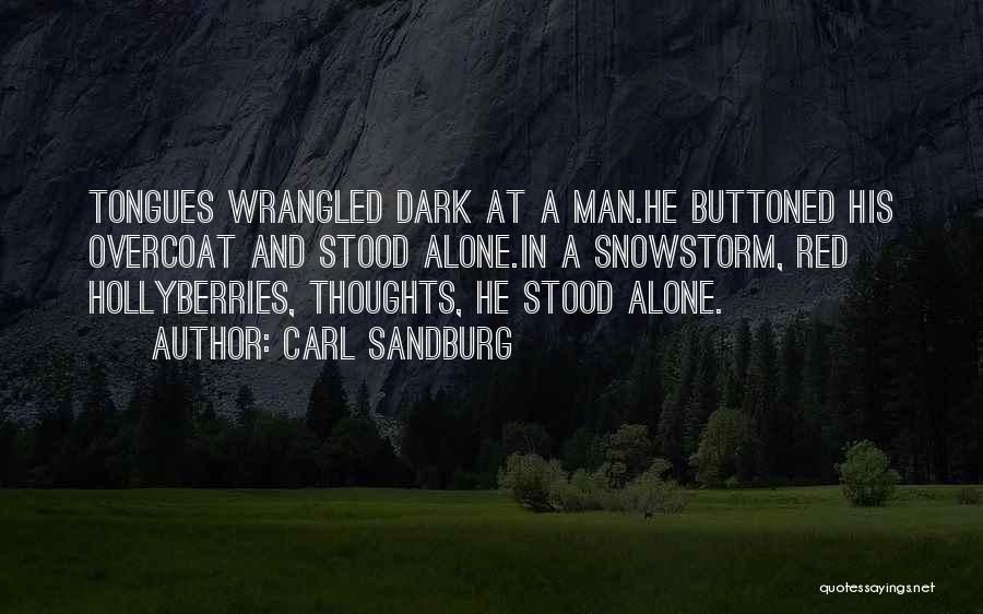 Solitude And Quotes By Carl Sandburg