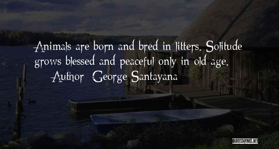 Solitude And Quotes By George Santayana