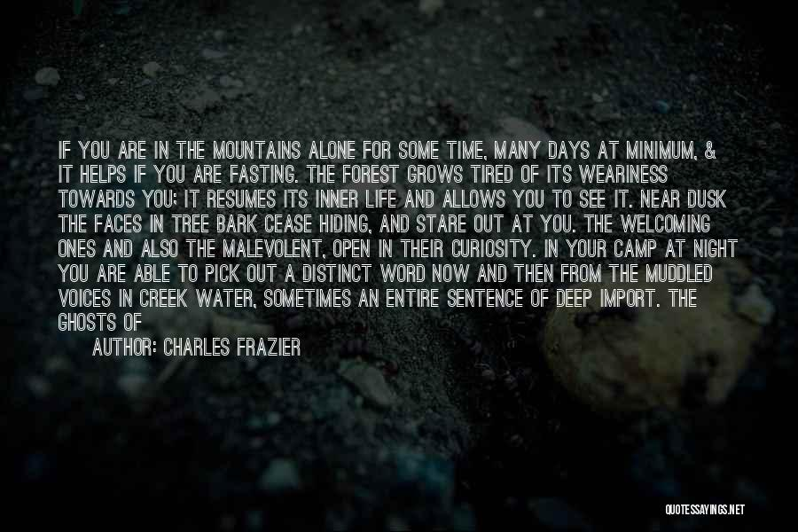 Solitude And Reflection Quotes By Charles Frazier