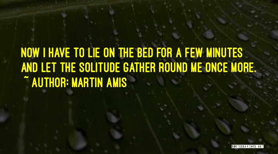 Solitude And Reflection Quotes By Martin Amis