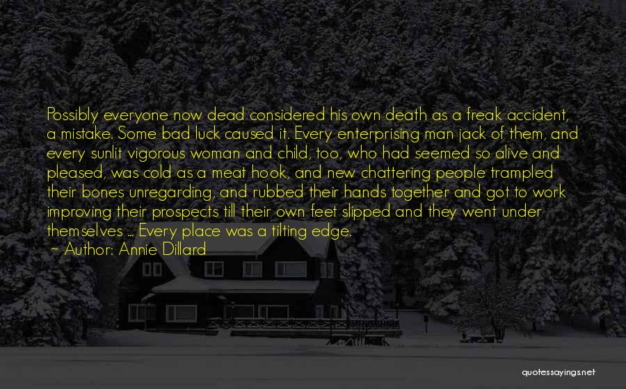 Some Bad Quotes By Annie Dillard