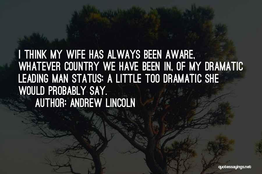 Someone Always Having Something To Say Quotes By Andrew Lincoln