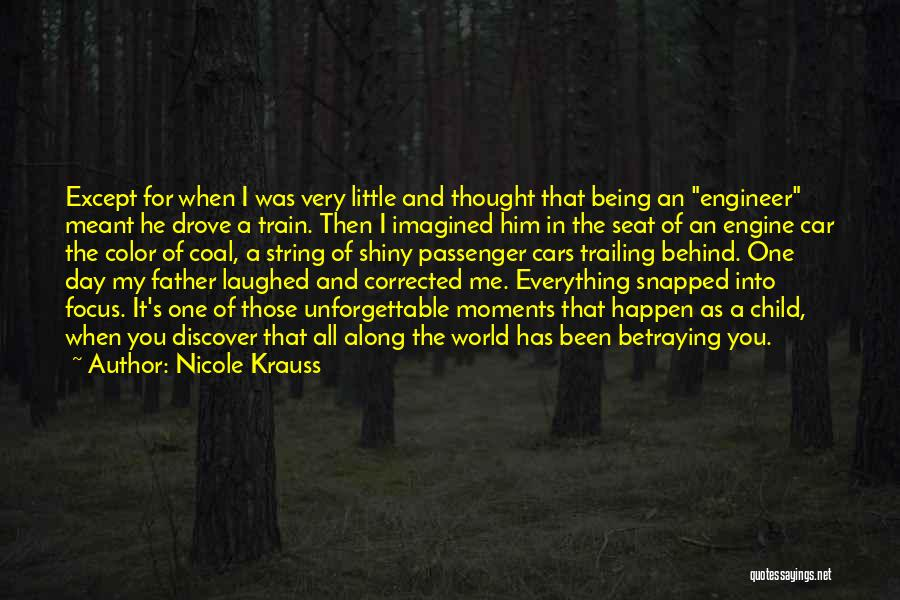 Someone Being There All Along Quotes By Nicole Krauss