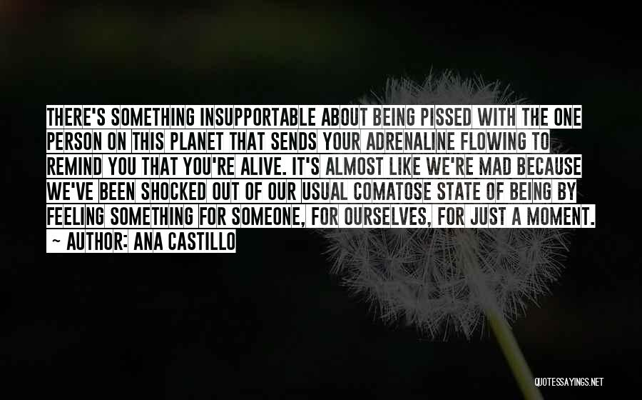 Someone Being There For You Quotes By Ana Castillo