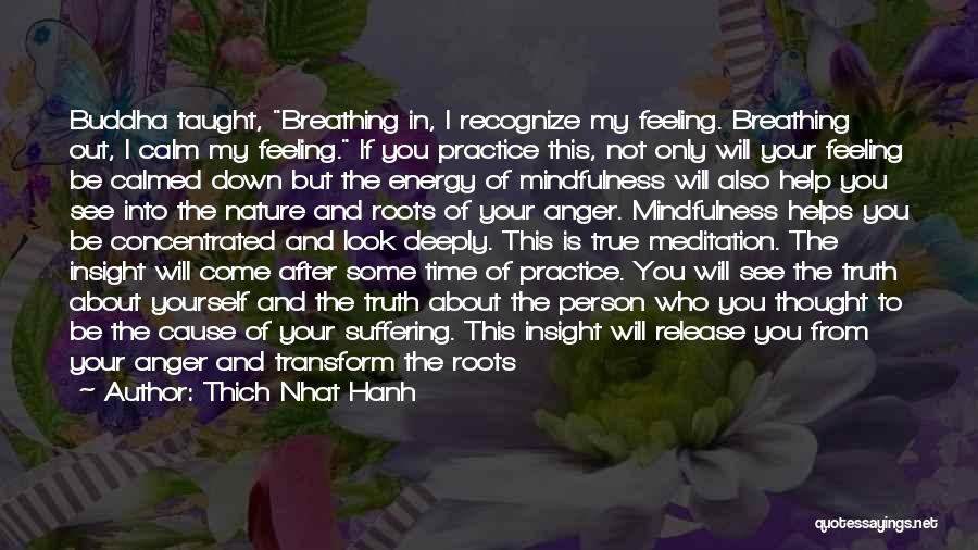 Someone Bring You Down Quotes By Thich Nhat Hanh