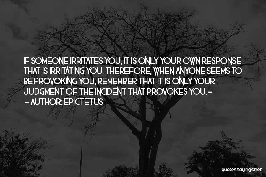 Someone Irritates You Quotes By Epictetus