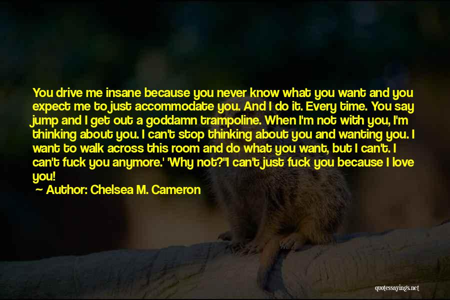 Someone Not Wanting You Anymore Quotes By Chelsea M. Cameron