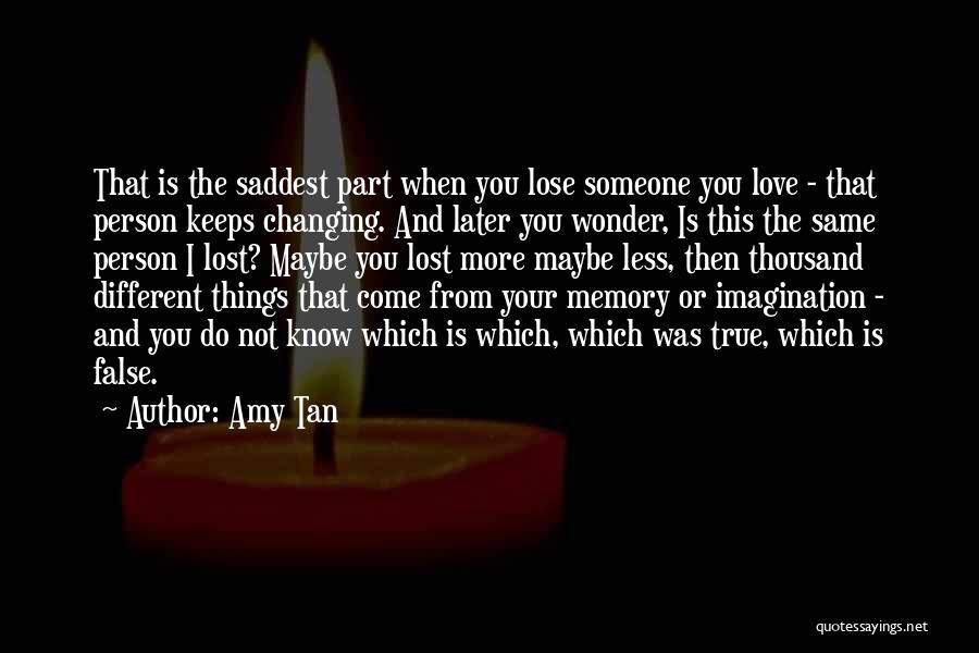Someone That I Love Quotes By Amy Tan