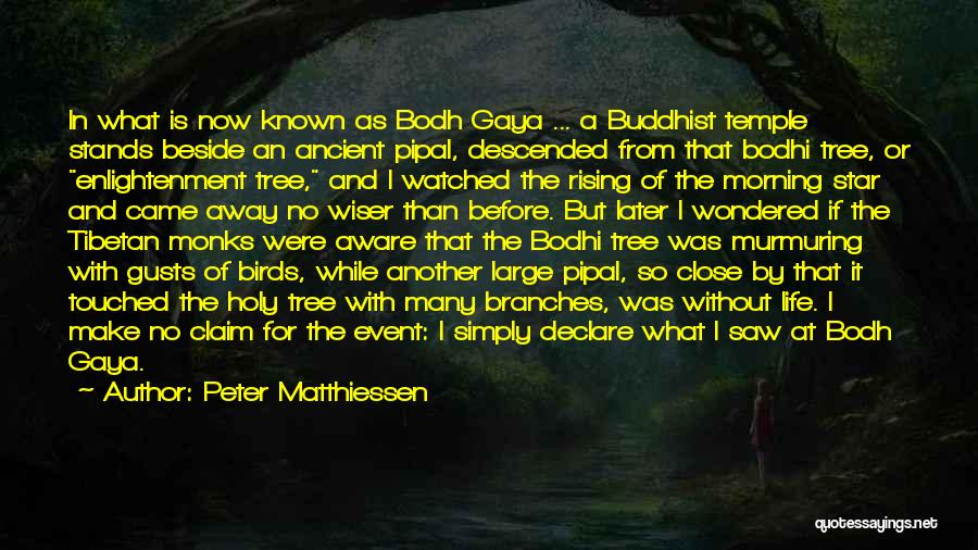 Someone Who Has Touched Your Life Quotes By Peter Matthiessen