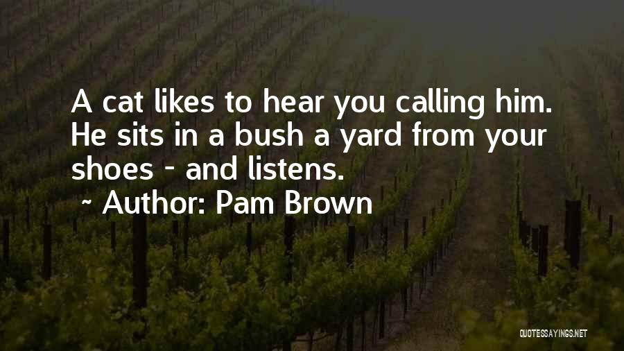 Someone Who Listens Quotes By Pam Brown