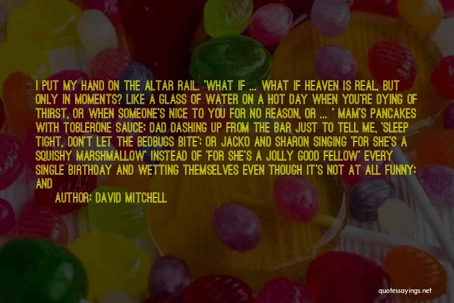 Someone's Birthday In Heaven Quotes By David Mitchell