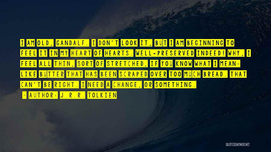 Something In My Heart Quotes By J.R.R. Tolkien