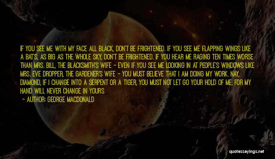 Something You Can't Change Quotes By George MacDonald