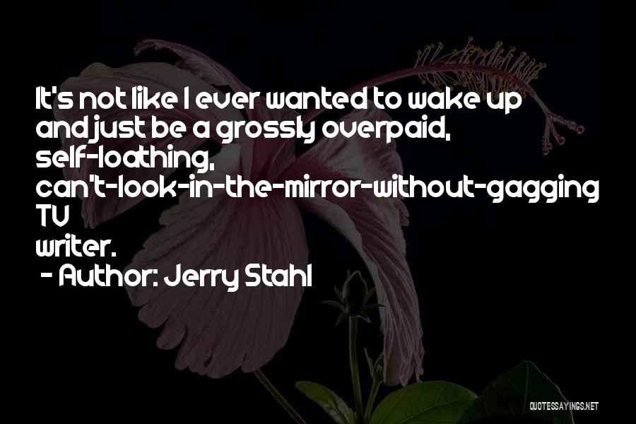 Sometimes I Look In The Mirror Quotes By Jerry Stahl