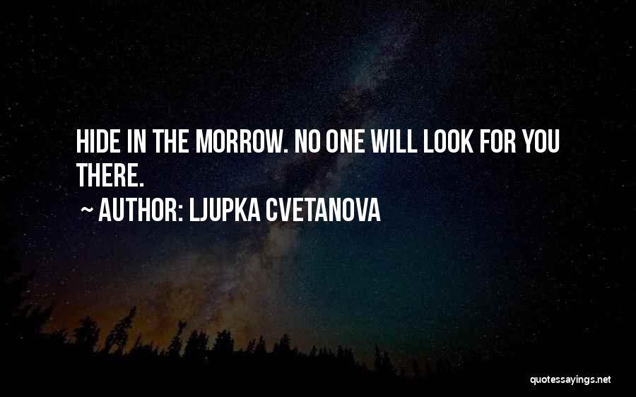 Sometimes I Look In The Mirror Quotes By Ljupka Cvetanova
