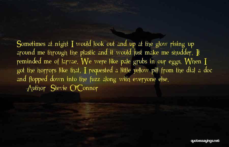 Sometimes I Look In The Mirror Quotes By Stevie O'Connor