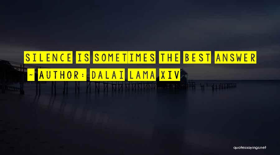 Sometimes Silence Best Answer Quotes By Dalai Lama XIV