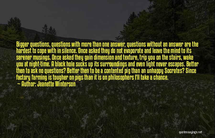 Sometimes Silence Best Answer Quotes By Jeanette Winterson