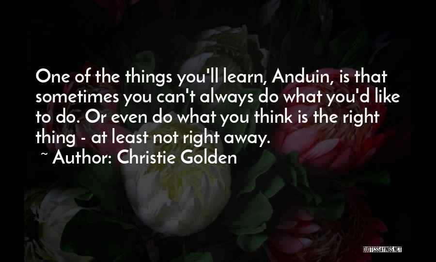Sometimes What You Think Quotes By Christie Golden