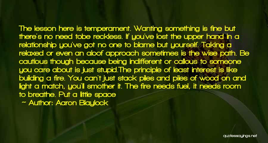Sometimes What You Want Quotes By Aaron Blaylock