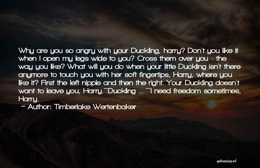 Sometimes What You Want Quotes By Timberlake Wertenbaker