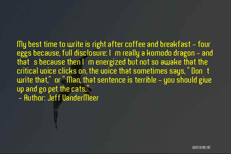 Sometimes You Give Up Quotes By Jeff VanderMeer