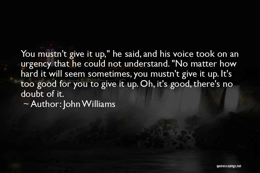 Sometimes You Give Up Quotes By John Williams