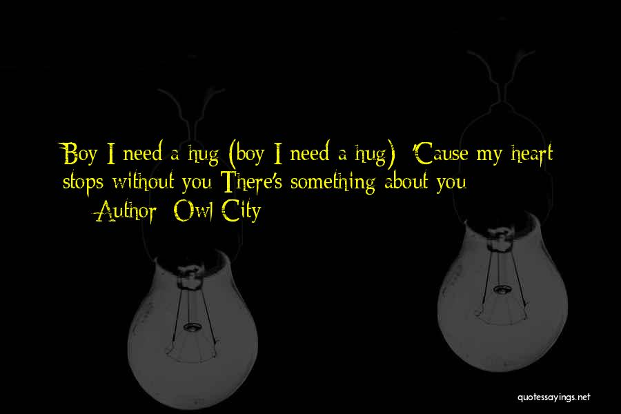 Sometimes You Just Need A Hug Quotes By Owl City