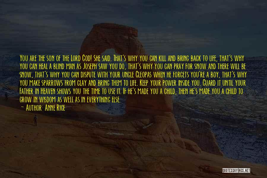 Son In Heaven Quotes By Anne Rice