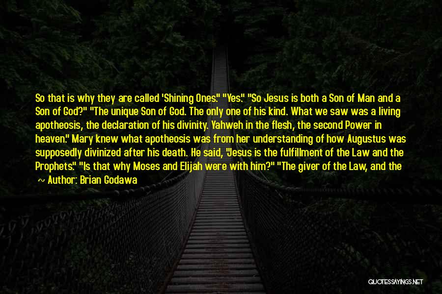 Son In Heaven Quotes By Brian Godawa