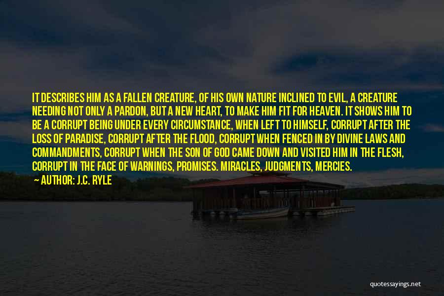 Son In Heaven Quotes By J.C. Ryle