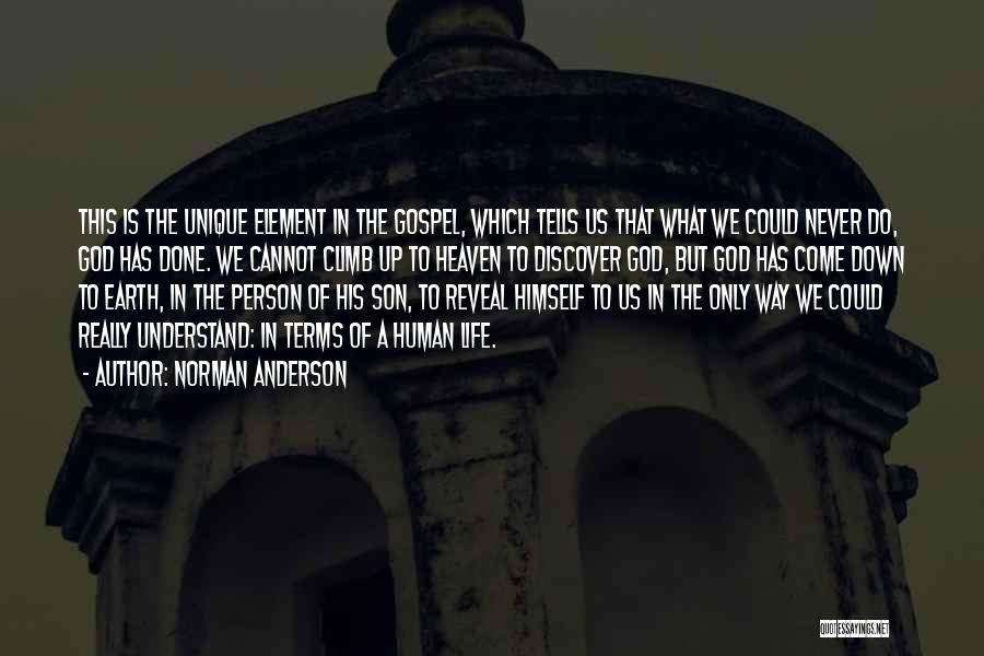 Son In Heaven Quotes By Norman Anderson