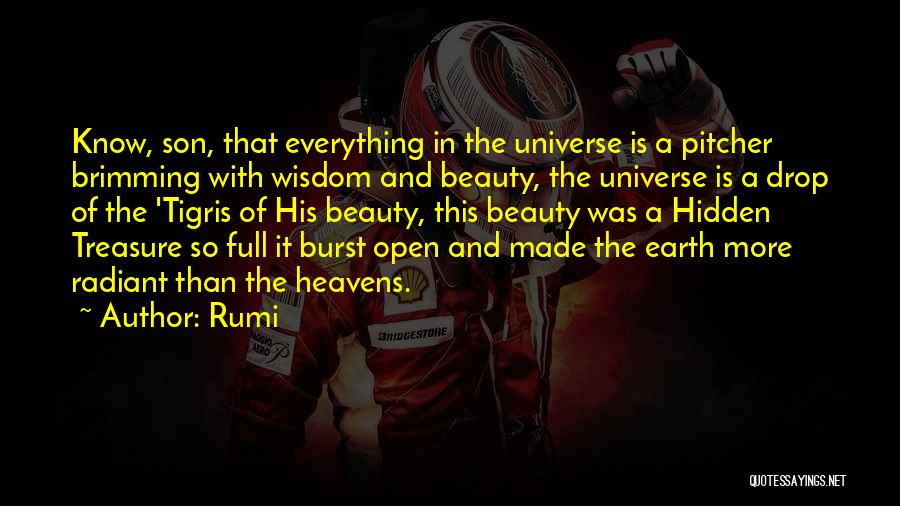Son In Heaven Quotes By Rumi