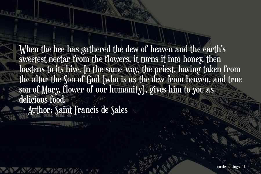 Son In Heaven Quotes By Saint Francis De Sales