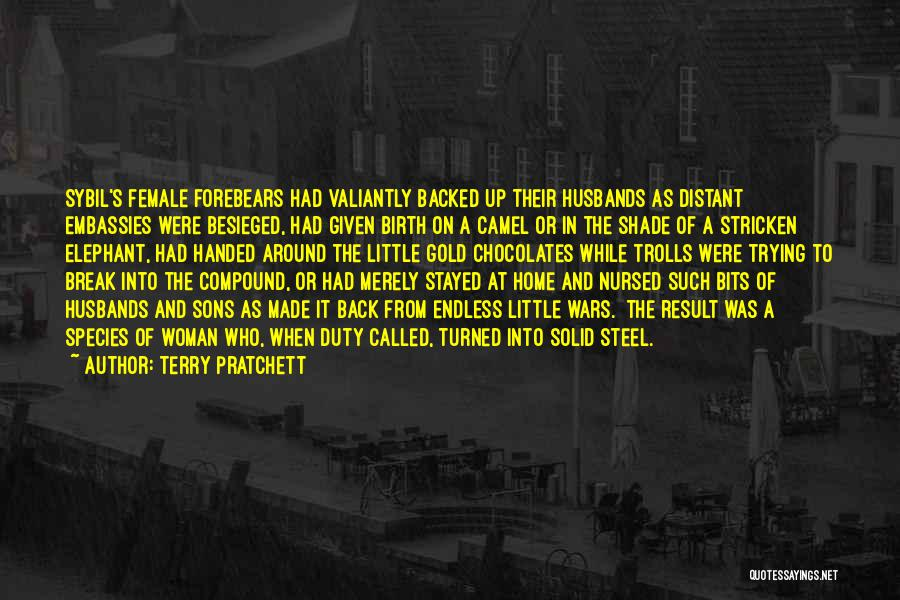 Sons And Husbands Quotes By Terry Pratchett