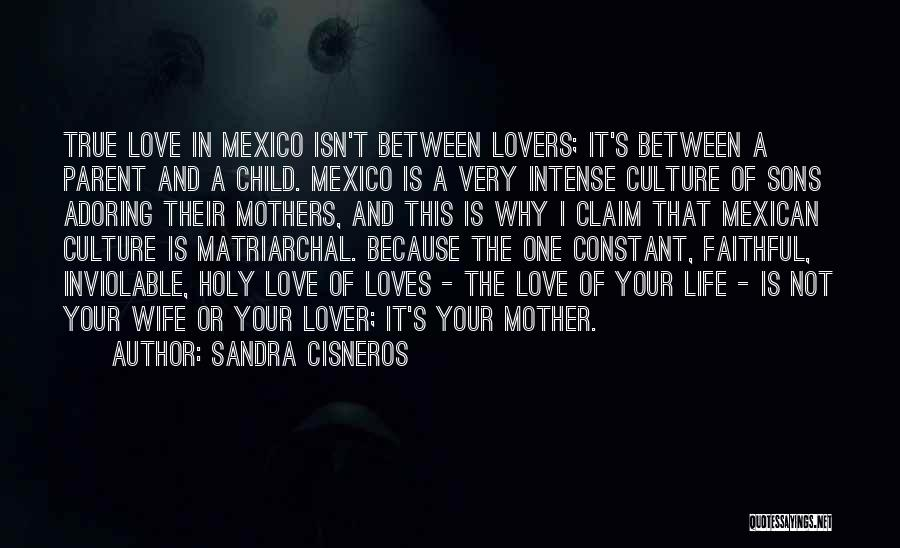 Sons And Mothers Love Quotes By Sandra Cisneros