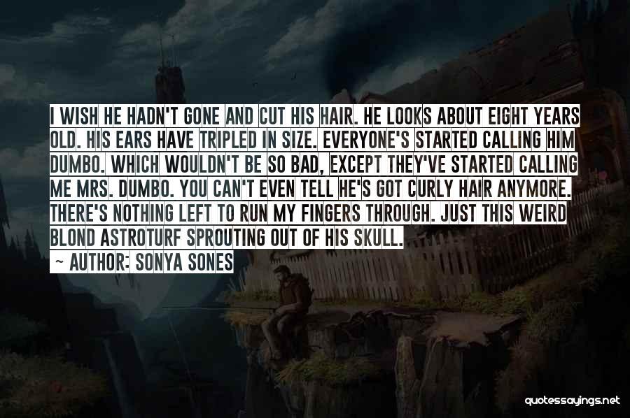 Sonya Sones Quotes 1383518