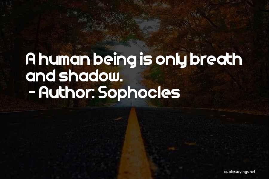 Sophocles Quotes 608045