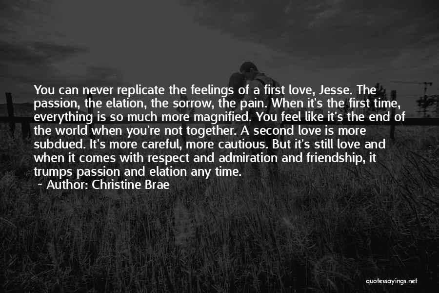 Sorrow And Friendship Quotes By Christine Brae