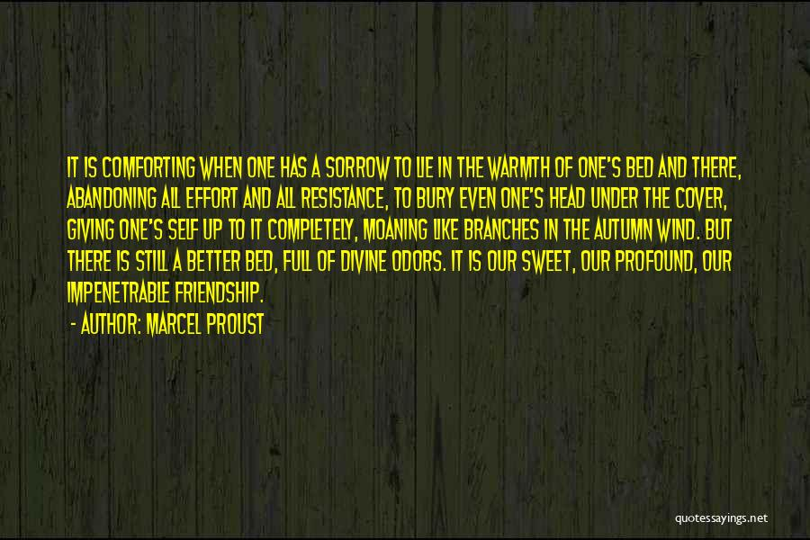 Sorrow And Friendship Quotes By Marcel Proust