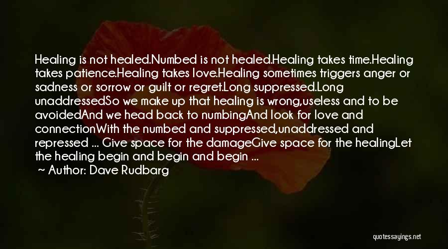 Sorrow And Healing Quotes By Dave Rudbarg